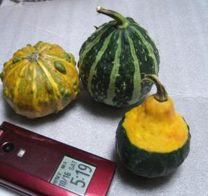 CIMG4868.jpg