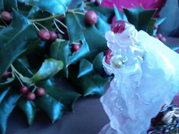 クリスマスひいらぎとサンタ