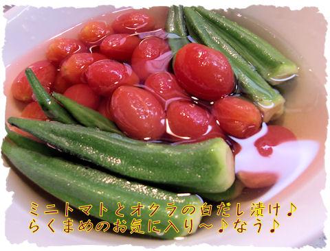 ミニトマトはアイコと言います。