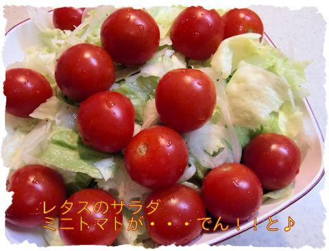 レタスのサラダ ドレッシングは手作りです。