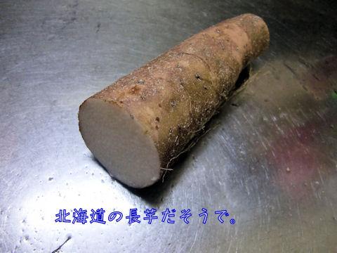 北海道産の長いもです。