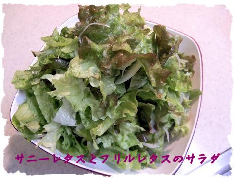 サラダ♪愛知産。最近サニーレタスがめっちいい状態で売られています~♪