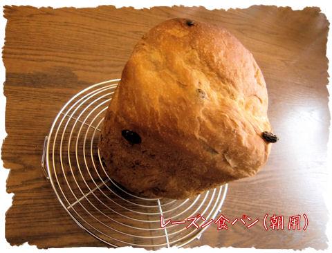 HB食パンです♪助かりますね~これは~♪
