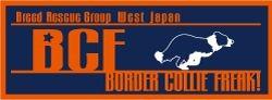 BCF_20111106121320.jpg