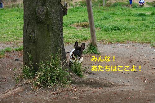 s-IMG_4597.jpg
