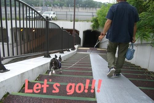 『 RAMUCO a Go Go !!! 』