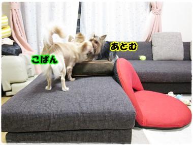 こぴ&あとむ
