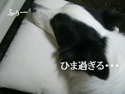 2011 2 6