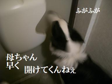 2011 2 18