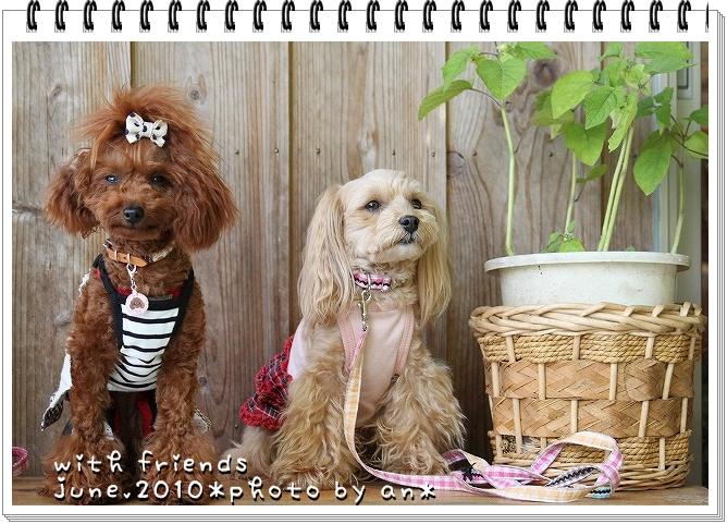 20100611_0840.jpg