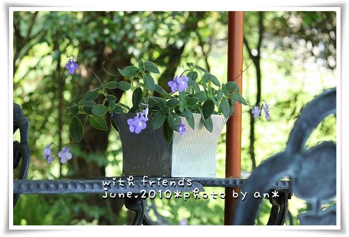 20100611_0844.jpg
