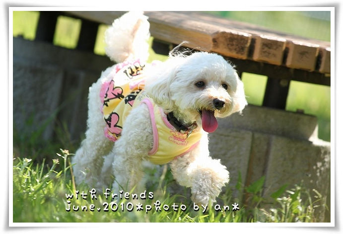 20100611_0977.jpg