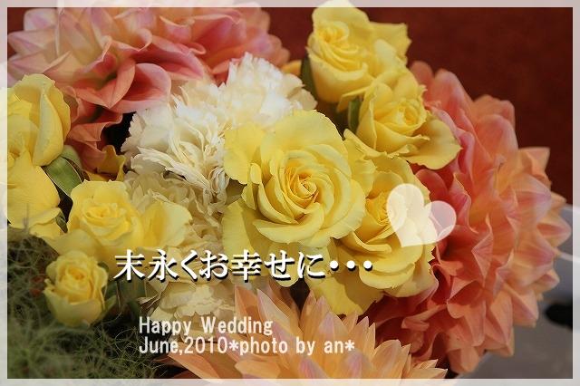 20100613_3681.jpg