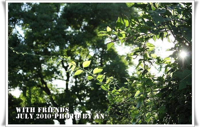 20100720_8929.jpg
