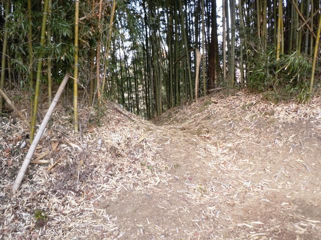 上尾城 (85)