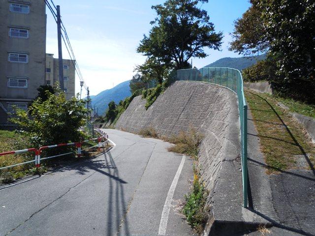 峰畑城 (13)