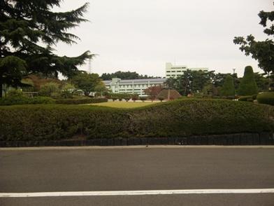奥羽大学 中庭