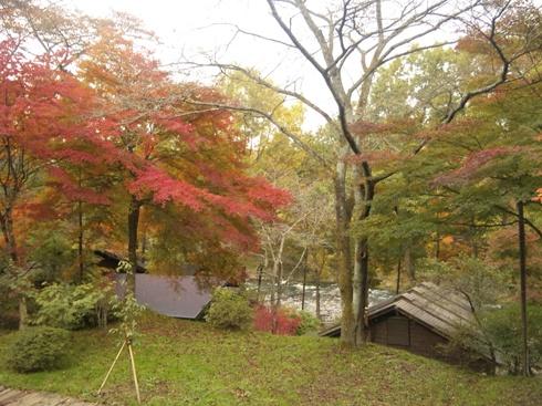 秋保木の家 珈琲館テラスからの紅葉