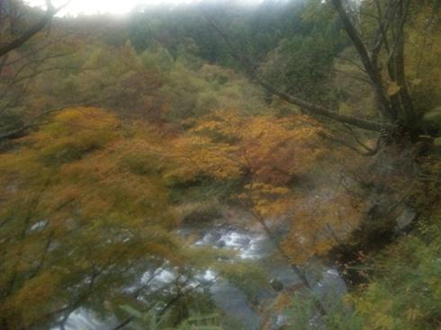 秋保木の家 入口からの紅葉