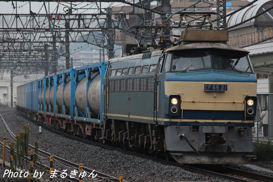 IMG_1650-1a.jpg