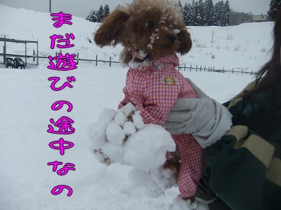 1.14雪玉