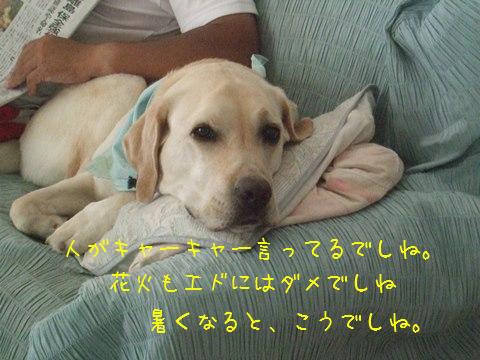 007_20130715134537.jpg