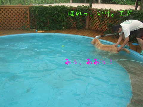 046_20130823143322edf.jpg