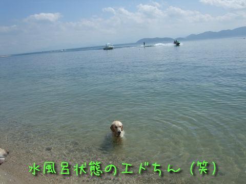 DSCF0016_20110913153856.jpg