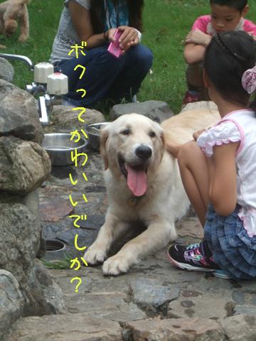 DSCF0042_20110919133518.jpg