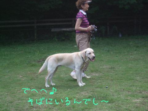 DSCF0046_20110919134212.jpg