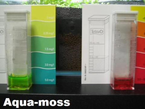 アンモニア亜硝酸