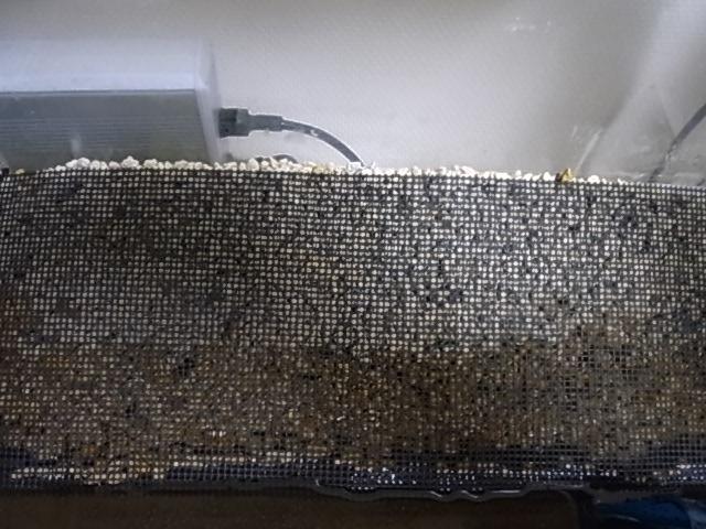 60P-1 004