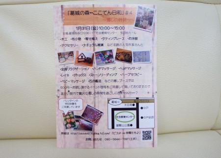 DSC07672_convert_20140128192046.jpg