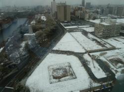 歴博周辺の雪景色