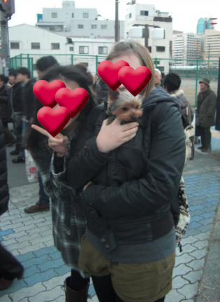 20110129.png