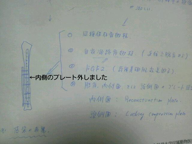 2012013119570000.jpg
