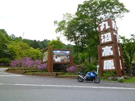 20116249.jpg