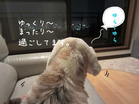 2_20120501155525.jpg