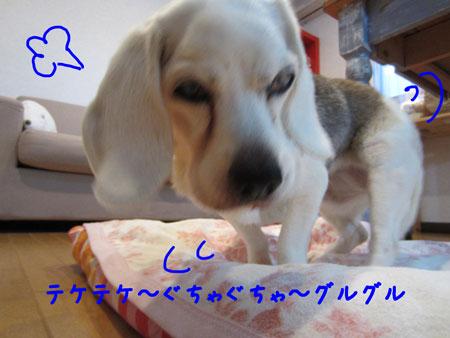 31_20120325180108.jpg