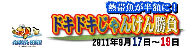 dokidoki_20110916232126.jpg