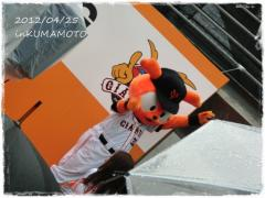 inKUMAMOTO.jpg