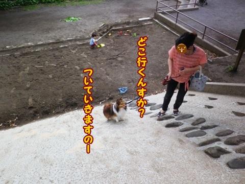 20130706007.jpg