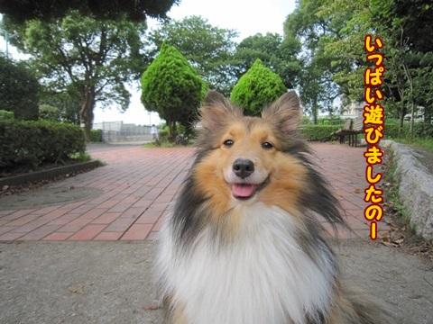 201307131006.jpg