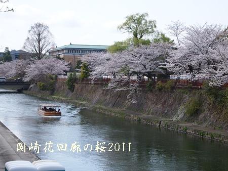 230409桜 G