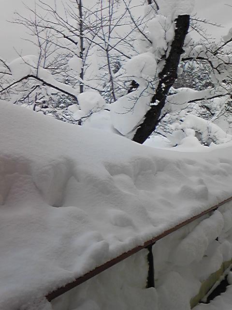 大雪2013