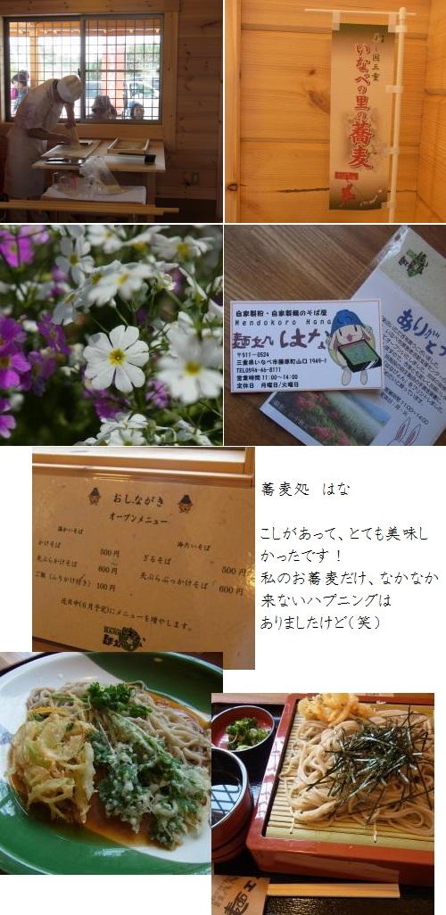 005_convert_20120501162732.jpg