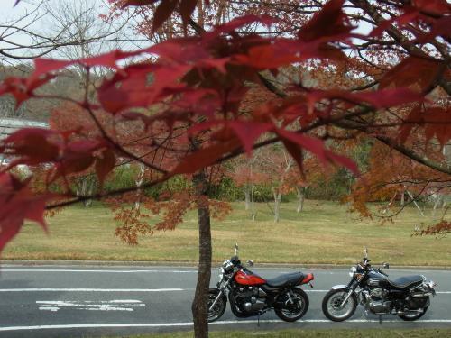 2011_1127_121415-RIMG0011_convert_20111127191252.jpg