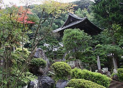臨斉寺花-9