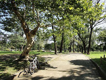 駿府公園-2