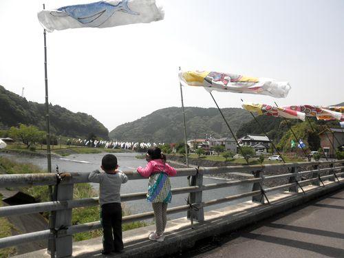 2011.5.4 kawakoinobori1